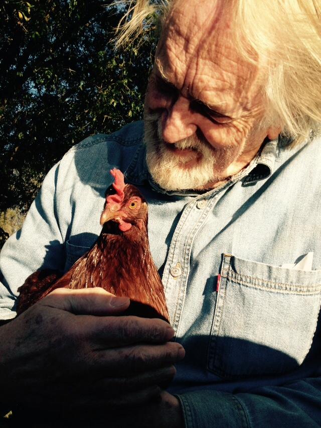 Hug your chicken each day
